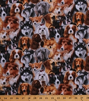 Cotton Dogs Allover Dog Breeds Collies Huskies Welsh Corgi Animals Pets Canine Cotton Fabric Print by the Yard (1314BLACK)