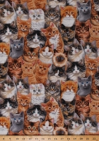 Cotton Cats Allover Cat Breeds Kittens Kitties Animals Feline Adorable Pets Cotton Fabric Print by the Yard (3802MULTI)