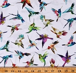 Cotton Hummingbirds Rainbow Colorful Birds Cotton Fabric Print by the Yard (10HL 1)