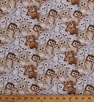 Cotton Epic Owls Packed Cute Owlets Birds Wildlife Nature Kayomi Harai Digital Cotton Fabric Print by the Yard (4944-9)