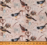 Cotton Birds Robins Butterflies Nests Eggs Keys to Unlock the Garden Cream Cotton Fabric Print by the Yard (RN-124655-20126)