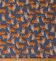 Cotton Dogs Pembroke Welsh Corgis Corgi Pets Animals Canines on Gray Cotton Fabric Print by the Yard (GM-C7525-GREY)