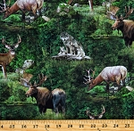 Cotton Deer Animals Woodlands Nature Scenic Timberland Green Cotton Fabric Print by the Yard (DP23823-36)