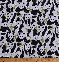 Cotton Pandas Panda Bears Animals on White Cotton Fabric Print by the Yard (FUN-C7019-WHITE)