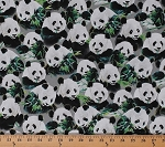 Cotton Pandas Panda Bears Eating Bamboo Plants Wildlife Animals Nature Asia Imperial Panda Gray Cotton Fabric Print by the Yard (1649-24979-K)