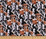 Cotton Farm Animals Packed Cows Cow Holstein Cotton Fabric Print by the Yard 432- Black