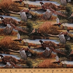 Cotton Feathered Run Birds Pheasant Animals Nature Hunting Cotton Fabric Print by Yard (59995-A620715)