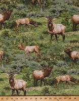 Cotton Elk Animals Wildlife Northwoods Born Free Scenic Green Cotton Fabric Print by the Yard (112-31981)