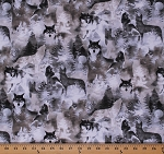Cotton Wolf Wolves Animals Wildlife Nature Forest Trees Moon Into the Woods II Gray Scenic Cotton Fabric Print by the Yard (08720-11)