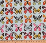 Cotton Flutter Fly Butterflies Insects Cotton Fabric Print by the Yard CJ6444-SKYX-D