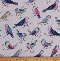 Cotton Songbirds Multi-Colored Birds Branches Berries Spring Nature All A Twitter Sweet Pea Digital Cotton Fabric Print by the Yard (P4390-447-SWEETPEA)