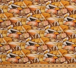 Cotton Cheese Blocks Wedges Cheeses Types Gourmet Cooking Chef Kitchen Food Festival Cotton Fabric Print by the Yard (388MULTI)