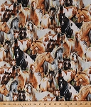 Cotton Horses Stallion Mare Foal Colt Filly Equestrian Ranch Farm Animals Packed Unbridled Cotton Fabric Print by the Yard (1885-9125-291)
