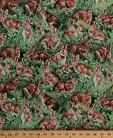Cotton Bunnies Bunny Rabbits in Grass American Wildlife Animals Scenic Cotton Fabric Print by the Yard (112-29451)
