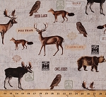 Cotton Animals Deer Foxes Owls Brown Bears Moose North Woods Woodland Animals Wildlife on Natural Cotton Fabric Print by the Yard (KATIE-C5256-NATURAL)