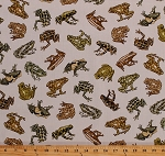 Cotton Amazon Frogs Animals on Cream Wildlife Amphibians Tropic Rainforest III Cotton Fabric Print by the Yard (06500-07)