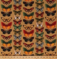 Cotton Butterflies Butterfly Insects Bugs on Tan Tropic Rainforest III Cotton Fabric Print by the Yard (06503-79)