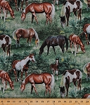 Cotton Horses Stallions Mares Foals Filly Colt Equestrian Farm Animals Landscape Meadow Fields Pastures Valley Crest Paint Horse Scenic Cotton Fabric Print by the Yard (64265-A620715)