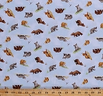 Cotton Bears Cute Baby Bear Cubs Animals You're All My Favorites Kids Children's Book Light Sky Blue Cotton Fabric Print by the Yard (Y2458-97LIGHTSKY)