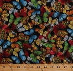 Cotton Butterfly Butterflies Insects Bugs Nature Black Cotton Fabric Print by the Yard (2005-62450-J)