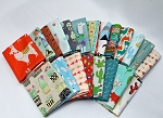 10 Fat Quarters -Modern Southwest Southwestern Aztec Tribal Cactus Cacti Llama Alpaca Teepee Tipi Arrows Quality Quilters Cotton Assorted Fat Quarter Bundle M221.12