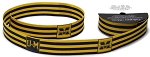 Collegiate Ribbon - University of Michigan Wolverines College Sports Team 1
