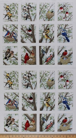 "23.5"" X 44"" Panel Beautiful Birds Bird Nesting Bird-watching Nests Cotton Fabric Panel (4309-CREAM-PANEL)"