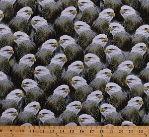 Cotton Bald Eagles Packed Birds of Prey Animals Wildlife Majestic Eagles Nature Cotton Fabric Print by the Yard (1649-24324-K)