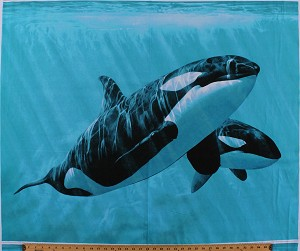 "35"" X 44"" Panel Killer Whales Mother and Son Orcas Pod Swimming Water Ocean Sea Animals Fish Cotton Fabric Panel (AL-3673-9C 1 Multi)"