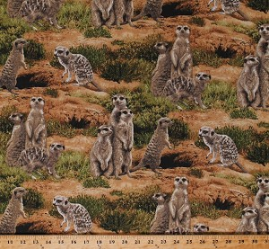Cotton Meerkats Mongoose Africa African Animals Wildlife Scenic Nature Born Free Cotton Fabric Print by the Yard (112-31941)