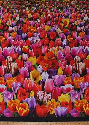 Cotton Tulips Tulip Field Flowers Floral Spring Holland Netherlands Digital Garden Cotton Fabric Print by the Yard (DP533MULTI)