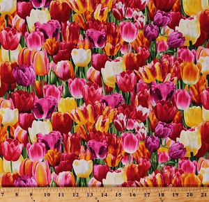 Cotton Tulips Tulip Fields Flowers Spring Dutch Netherlands Floral Landscape Cotton Fabric Print by the Yard (NATURE-C6711-BRIGHT)