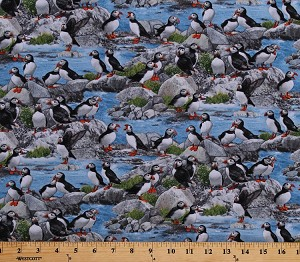 Cotton Puffins Birds Seabirds Animals Rocks Scenic North American Wildlife Blue Cotton Fabric Print by the Yard (567BLUE)