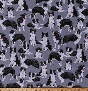 Cotton Border Collies Herding Dogs Puppies Animals Canine on Gray Cotton Fabric Print by the Yard (GM-C7365-BLUE)