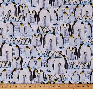 Cotton Penguins Allover Arctic Animals Wildlife Birds The Great North Wilderness Cotton Fabric Print by the Yard (04983-05)