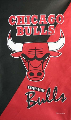 "NBA® Cotton Duck Fabric Panel - Chicago Bulls - 30"" X 48"""
