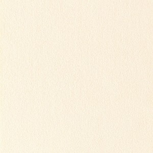 Ultrasuede® ST (Soft)  #357 Country Creme Fabric by the Yard